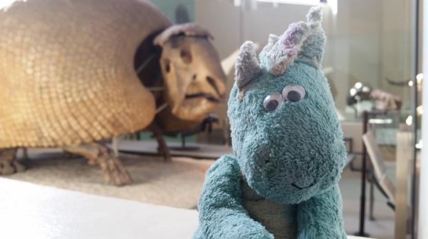 giant armadillo